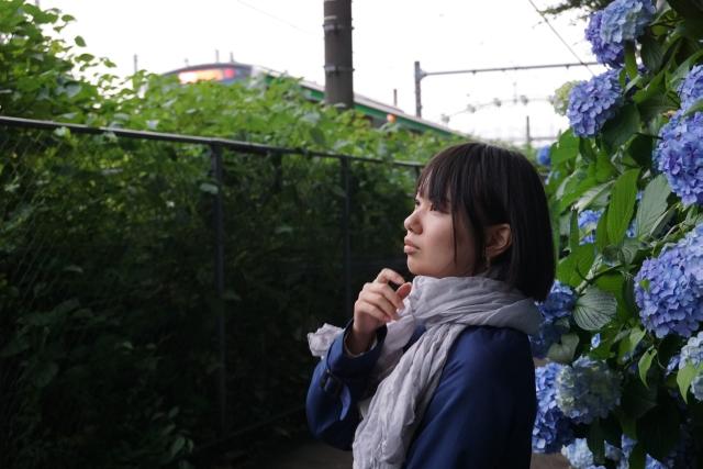 紫陽花01.jpg